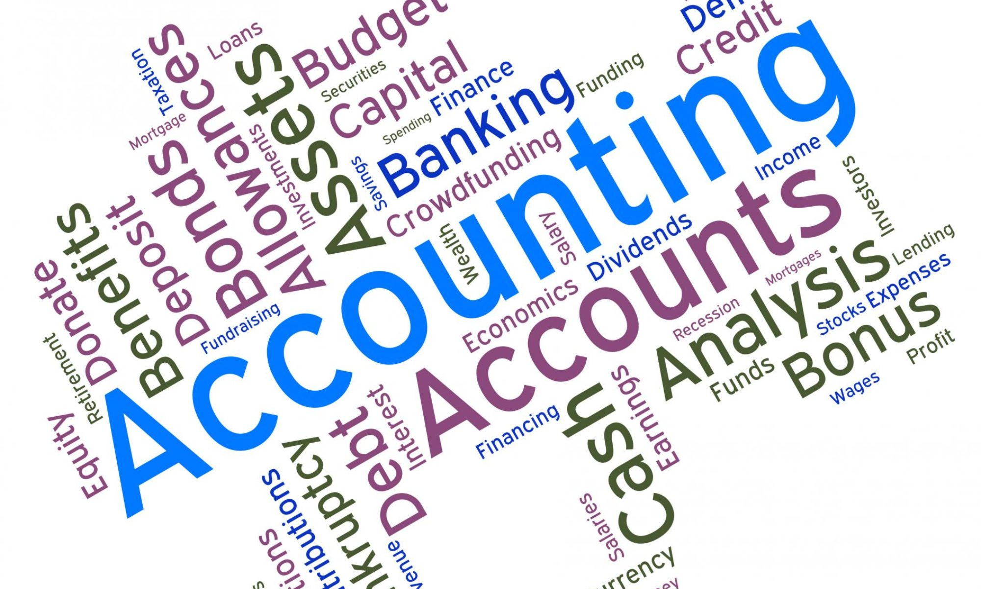 Personal Finances and Accountant Info